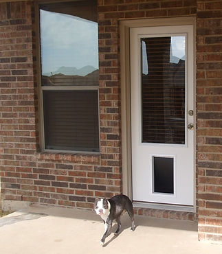 PET READY DOORS