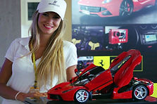 Happy Amalgam Fine Model Cars Ferrari LaFerrari Customer