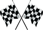 Checkered Flag #1.jpg