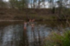 Australia, idyll, rural, river, spiritual