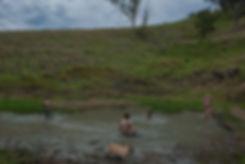 mud, damn, rural, idyll, farm, Australia, youth, play