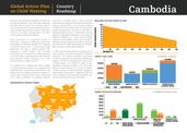 GAP Summary Sheet (Cambodia)_Page_1.png