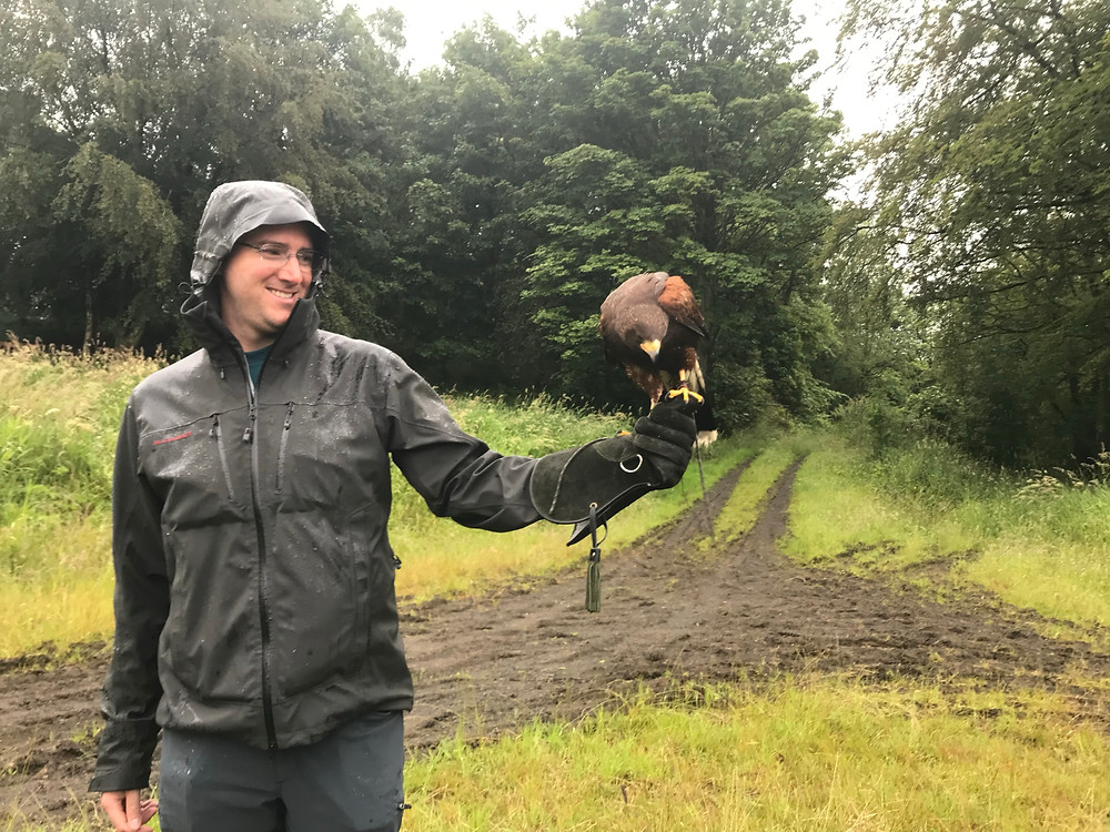 Rich with hawk