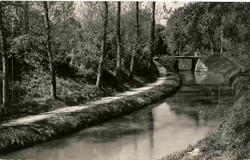 Canal0082.jpg