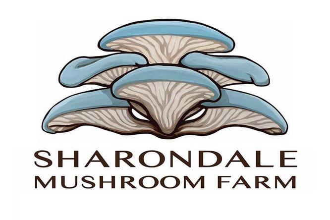 Vector Image of Full Logo_edited.jpg
