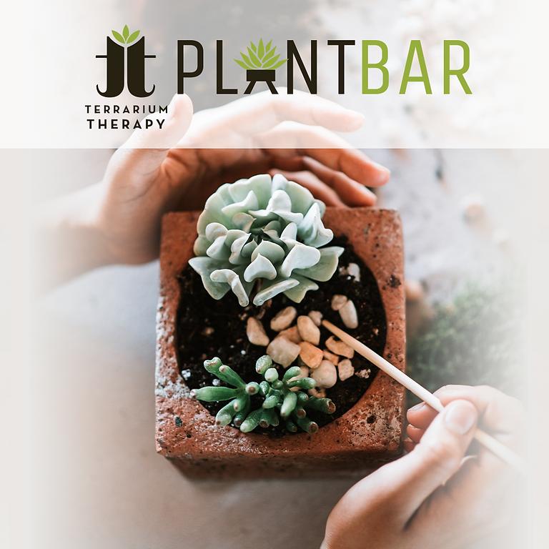 Pop-Up Plant Bar at Fireside Cafe