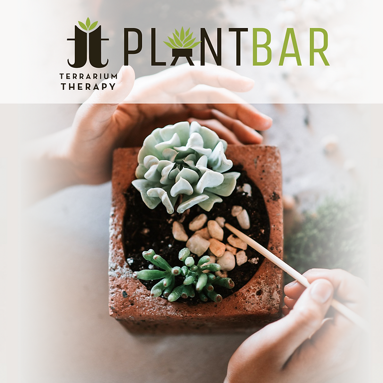 Pop-Up Plant Bar at Gift Horse Brewing Company