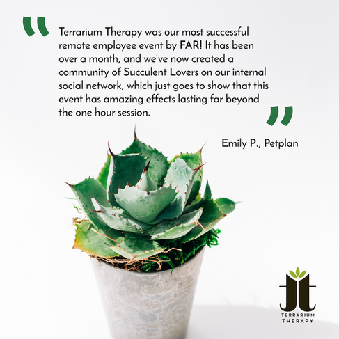 Terarrium Therapy Testimonials-02.png