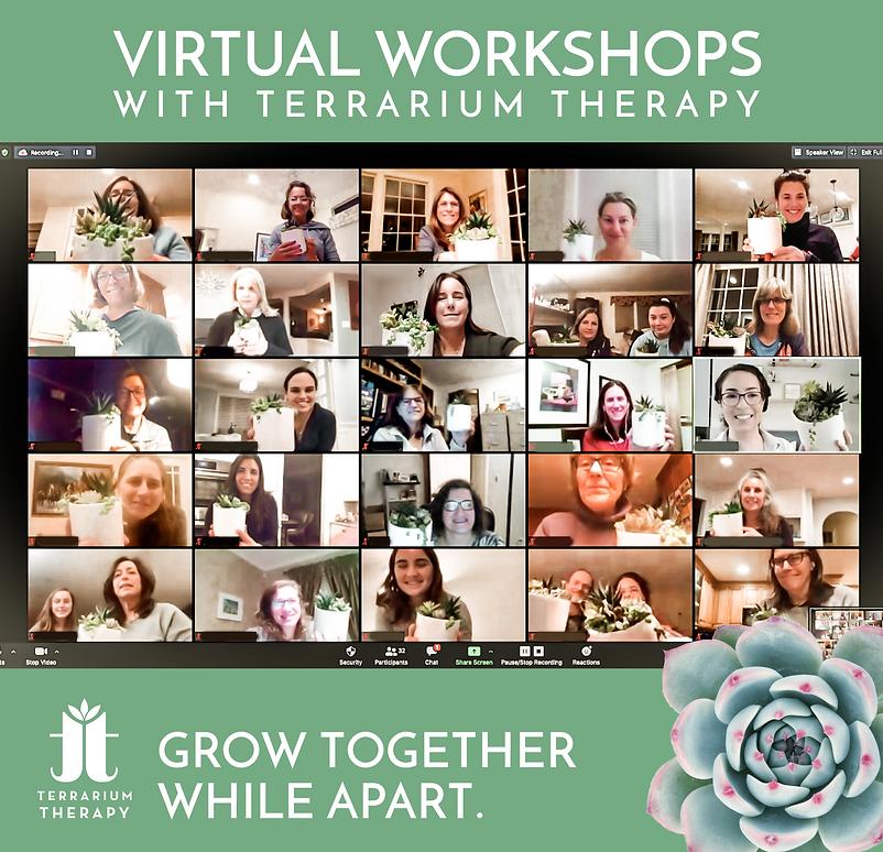 Virtual Workshop Feb 2021.png