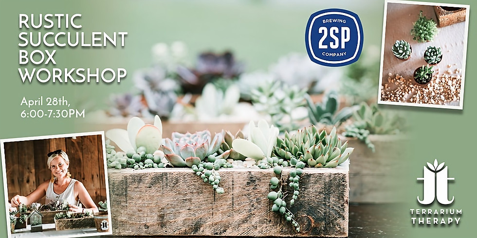 In-Person Rustic Succulent Box Workshop at 2SP Brewing Company