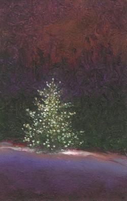 355-Dec 20.jpg