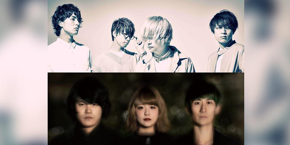 me get night 2man tour(#めげないツーマン)