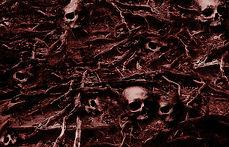 free_skull-background-texture.jpg