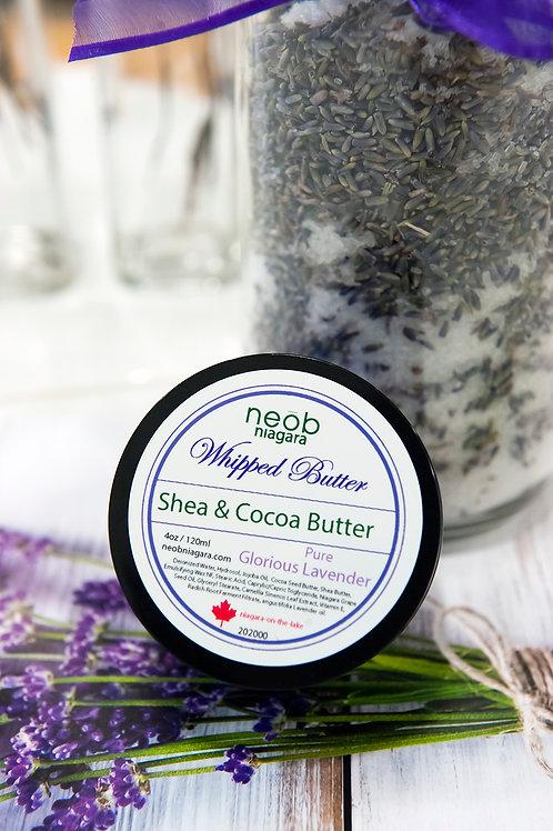Lavender Shea & Cocoa Butter