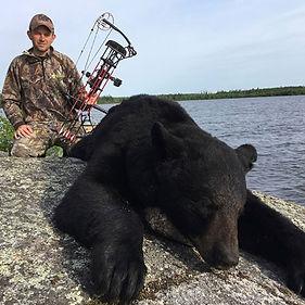 dd bear crop.jpg