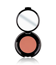 GENTLE TOUCH BLUSHER 314