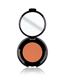 GENTLE TOUCH BLUSHER 312