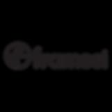 Framesi Logo.png