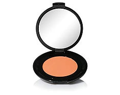GENTLE TOUCH BLUSHER 311