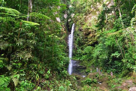 catarata-ahuashiyacu-tour-1.jpg