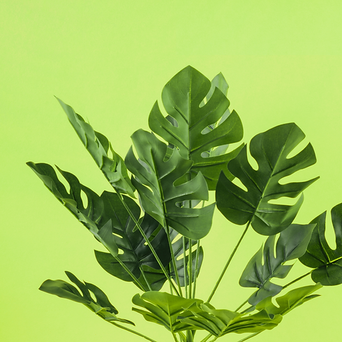 artificial-monstera-leaves-against-yellow-background.png