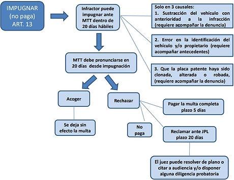 Preceso_Impugnación.jpg