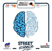 Street science 2.jpg