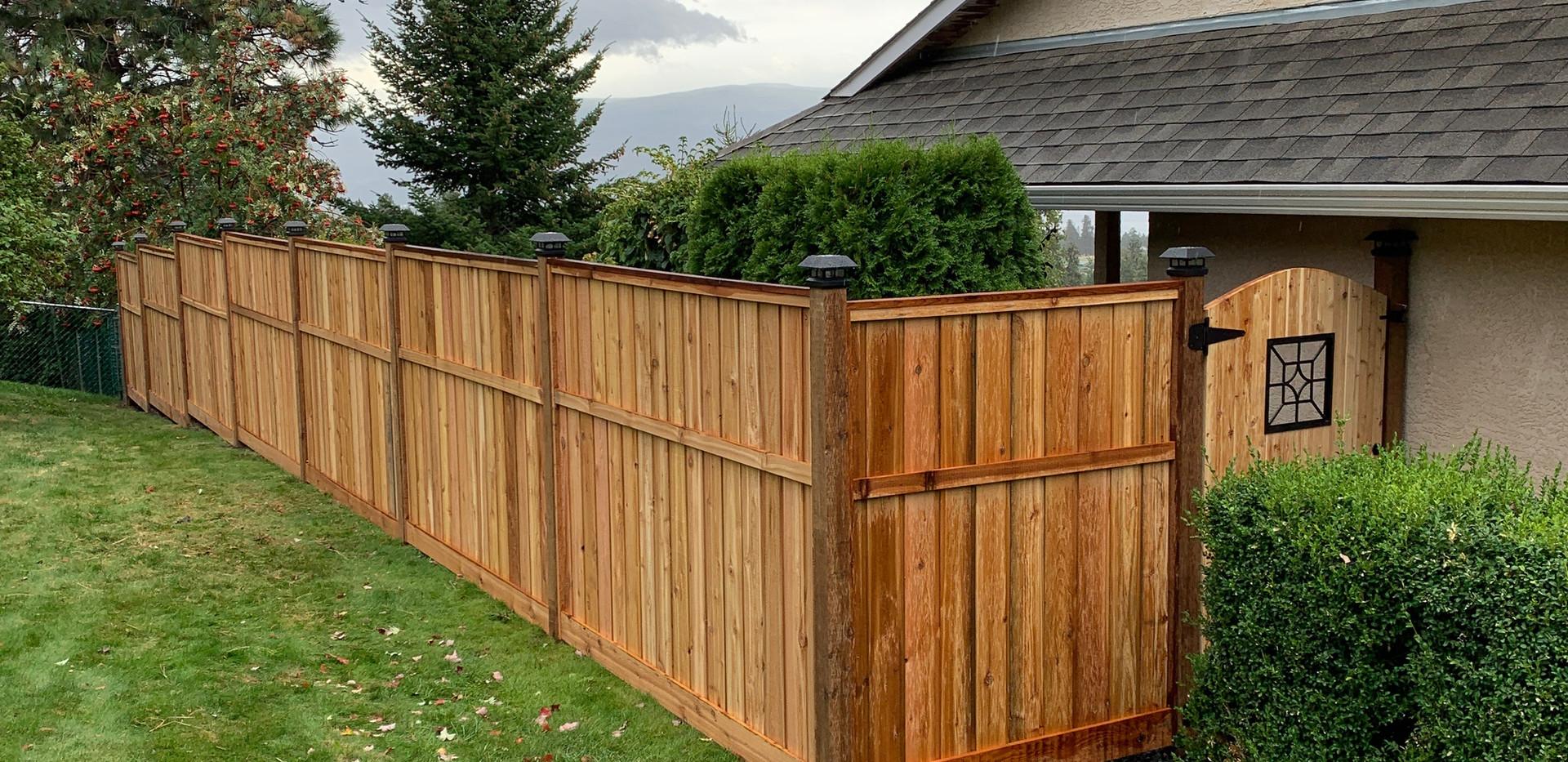 Cedar privacy fence