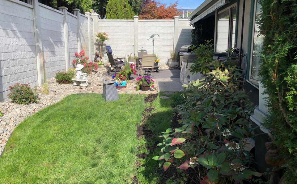 Concrete fence backyard.jpeg