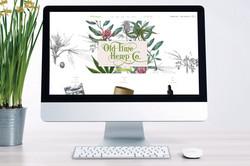 Website Design Ridgefield