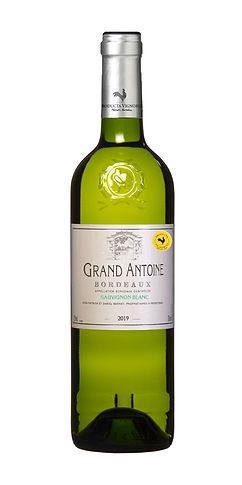 Grand Antoine Bordeaux.jpg