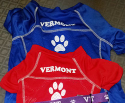 Copy%20of%20vt%20dog%20jersey_edited