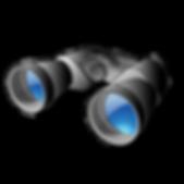 Binoculars_2.png