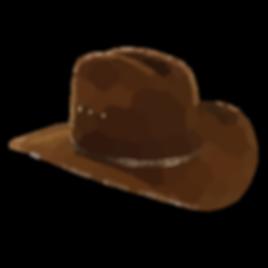 cowboy-hat-final-md.png