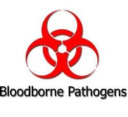 bloodborne icon