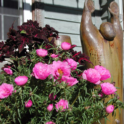Coleus, Moss Roses and a Statue