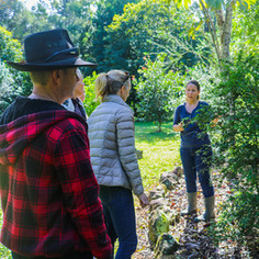 Gathering and learning about bushfoods