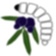 witjuti logo.png