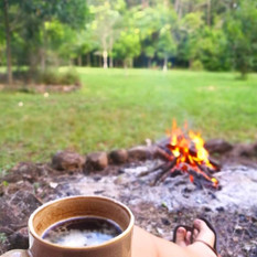 Fresh brewed myrtle leaf te by the fire