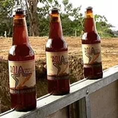 Cerveza Artesanal La Roja