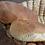 Thumbnail: Pan aliñado largo