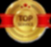 badge_top1.png