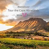 Tour The Cape.jpg