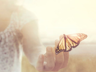 La vie après la vie - 1ère partie : réincarnation et karma
