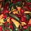 Thumbnail: Baumwollstoff bedruckt Timeless Peperoni