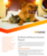 Pet-Hotel-and-Daycare-Program_2018_Page_