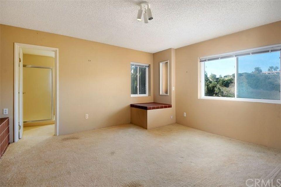 Lower level bonus room - Optional Office