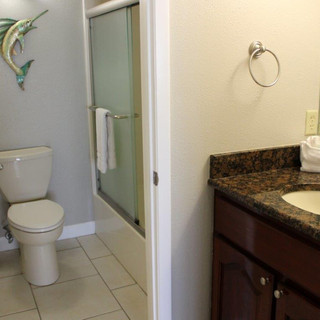 D601 Guest Bathroom.jpg
