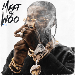 Cover Art For Meet The Woo