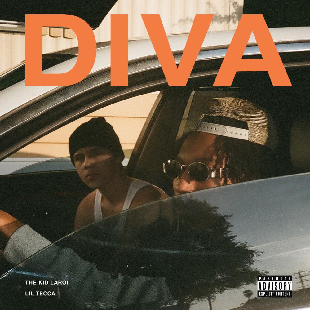 diva cover art